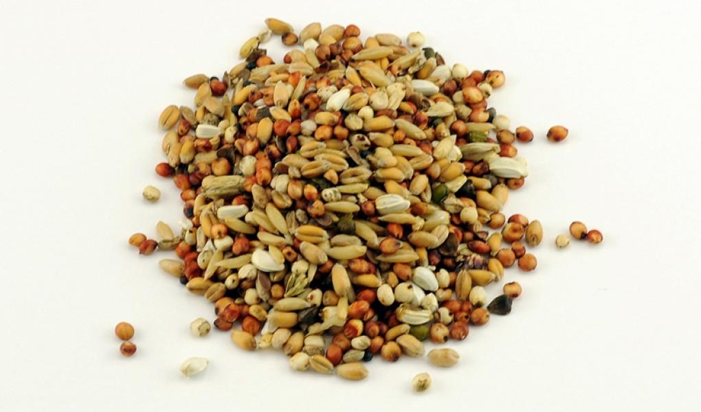 Руководство по приготовлению зерновых от Spotted Fin (Англия)